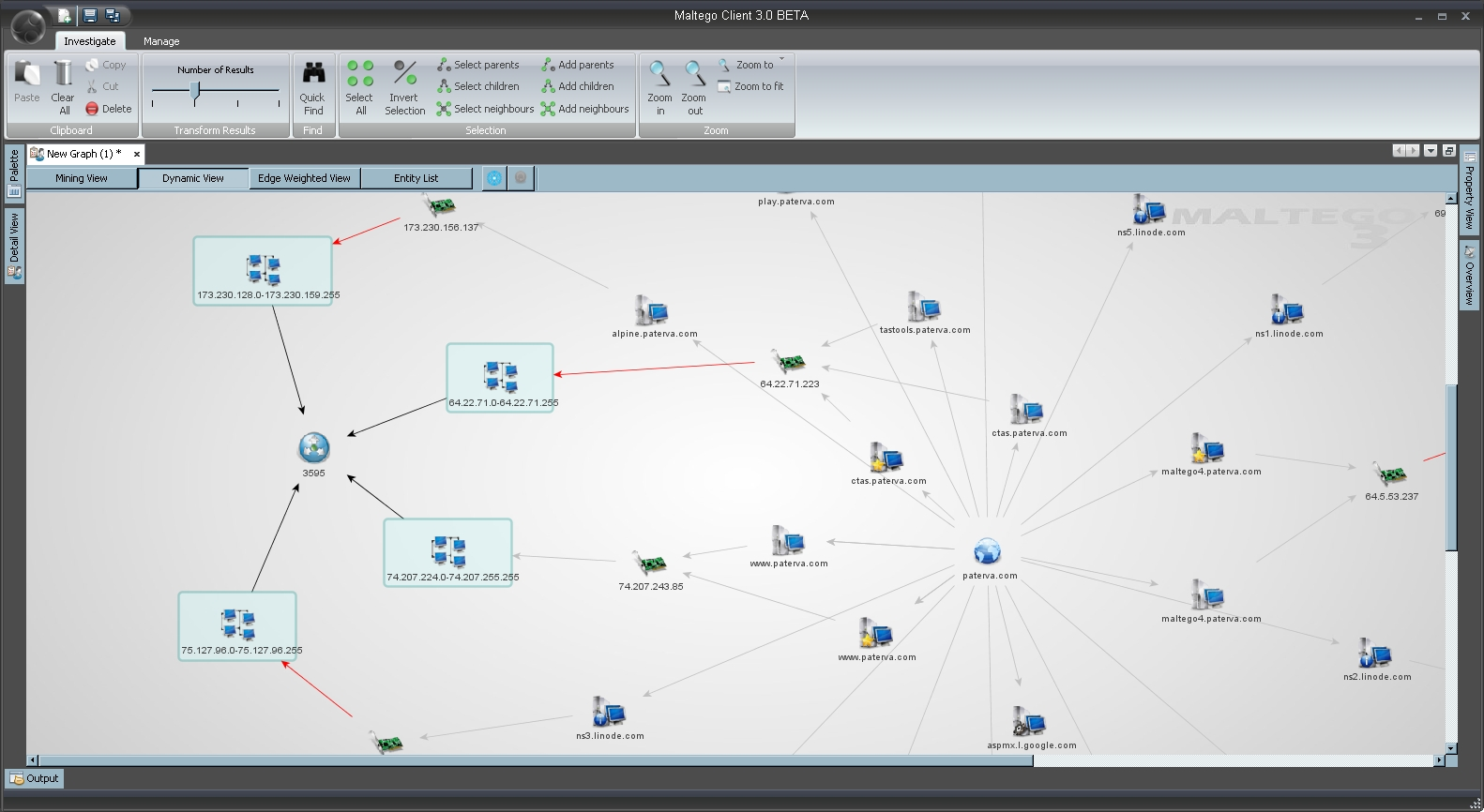 Maltego screenshot sectools Open source diagram tool